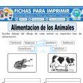 Ficha de Alimentación de los Animales para Primaria