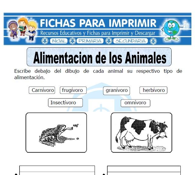 alimentación de los animales para primaria