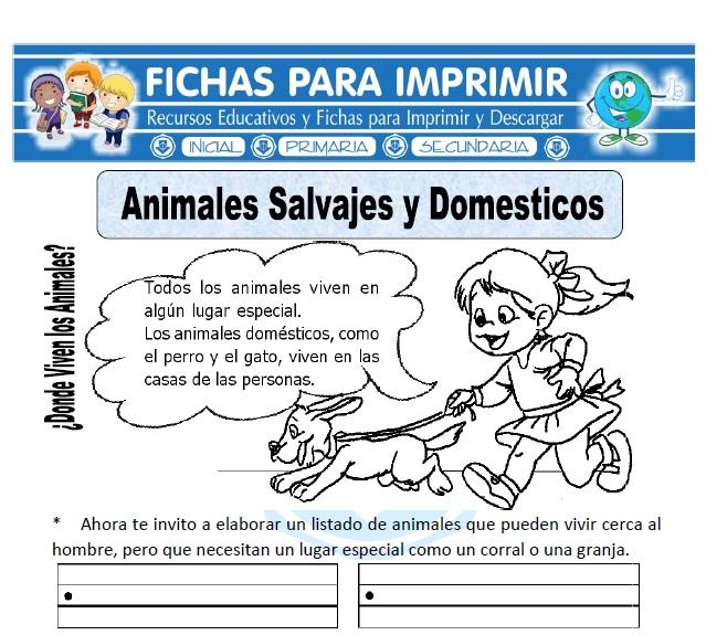 animales salvajes y domesticos-para-primaria