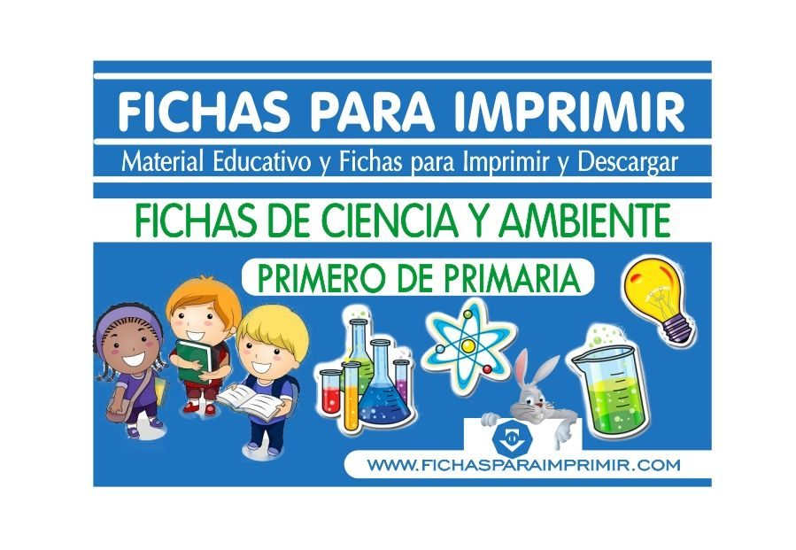 ciencia y ambiente para primero primaria