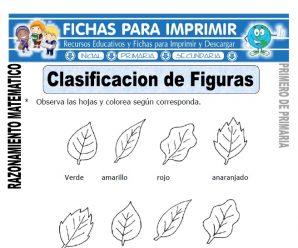 Clasificación de Figuras para Primero de Primaria