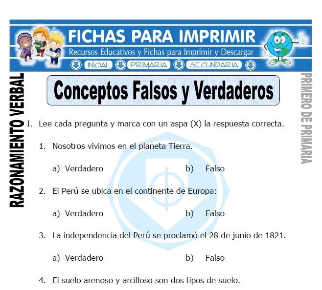 conceptos falsos y verdaderos para primero de primaria