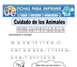 cuidadar a los animales para primaria