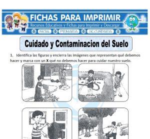 cuidado y contaminacion del suelo para primaria