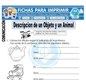 descripcion objetos animales para primero primaria