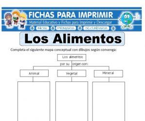 Ficha de Los Alimentos para Primaria