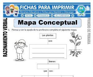 Mapa Conceptual para Primero de Primaria