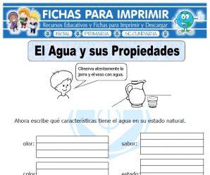 Ficha de Propiedades del Agua para Primaria