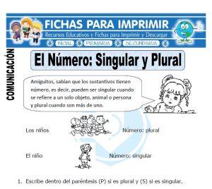 singular y plural para primero de primaria