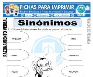 Sinónimos para Primero de Primaria