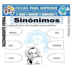 sinonimos para primero de primaria