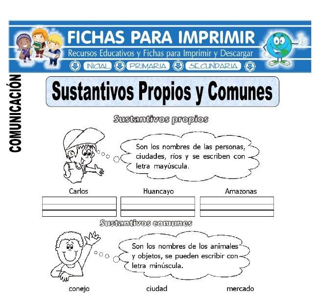 sustantivos propios y comunes para primero de primaria