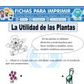 Ficha de Utilidad de la Planta para Primaria