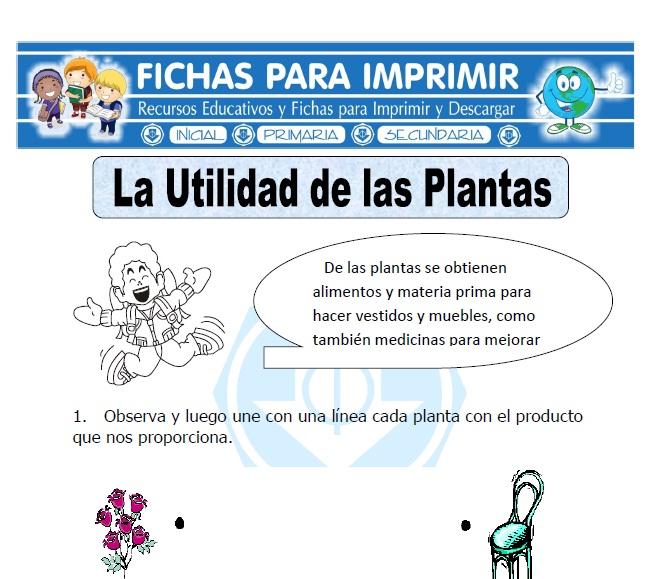 Ficha De Utilidad De La Planta Para Primaria Fichas Para
