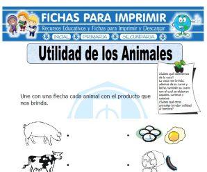 Ficha de Utilidad de los Animales para Primaria