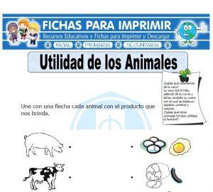 utilidad de los animales para primaria