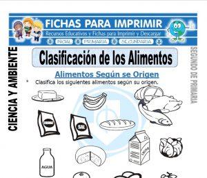 Ficha clasificacion de los alimentos Segundo de Primaria