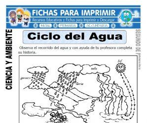 Ciclo del Agua para Segundo de Primaria