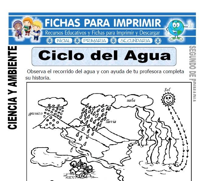 Ficha de Ciclo del agua Segundo de Primaria