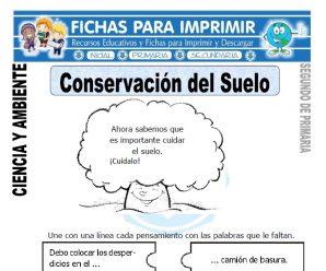 Conservación del Suelo para Segundo de Primaria