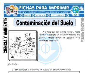 Contaminación del Suelo para Segundo de Primaria