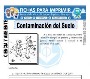 Ficha de Contaminacion del Suelo Segundo de Primaria