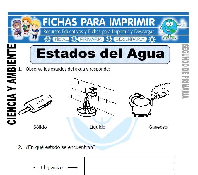 Ficha de Estados del agua Segundo de Primaria