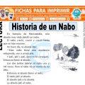 Historia de un Nabo para Segundo de Primaria