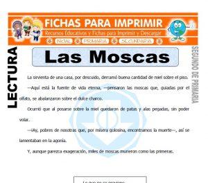 Ficha de Las Moscas Segundo de Primaria