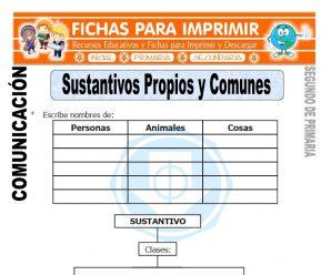 Sustantivos Propios y Comunes Segundo de Primaria