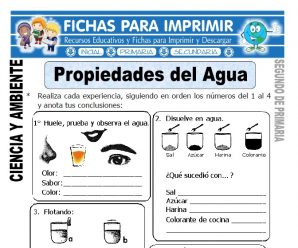Propiedades del Agua para Segundo de Primaria