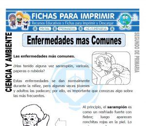 Ficha enfermedades mas comunes Segundo de Primaria