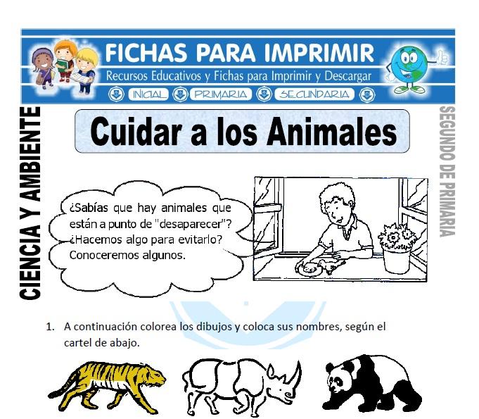 Fichas cuidar a los animales Segundo de Primaria