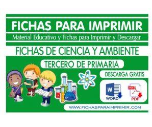 Ciencia y Ambiente para Niños Tercero de Primaria