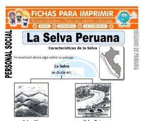 La Selva Peruana para Segundo de Primaria