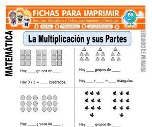 Partes de la Multiplicación para Segundo de Primaria