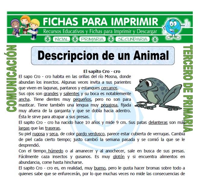 ficha de Descripcion de un Animal para Tercero de Primaria