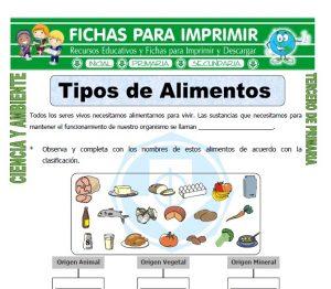 ficha de Tipos de Alimentos para Tercero de Primaria