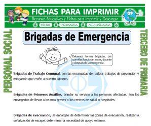 Que es una Brigada de Emergencia para Tercero de Primaria