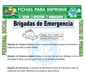 Ficha de Que es una Brigada de Emergencia para Tercero de Primaria