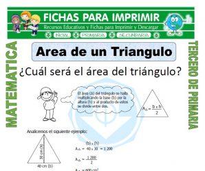 Area de un Triangulo para Tercero de Primaria