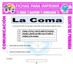 Ficha de Clases de Coma para Quinto de Primaria