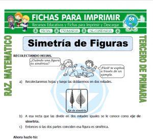 Ficha de Que es Simetria para Tercero de Primaria