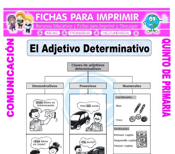 Ficha de Que son los Adjetivos Determinativos para Quinto de Primaria