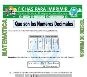 ficha de Que son los Numeros Decimales para Tercero de Primaria