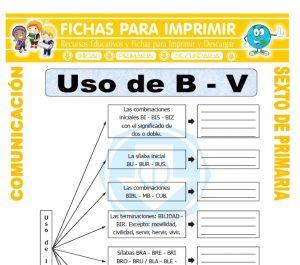 Ficha de Reglas del Uso de la B para Sexto de Primaria