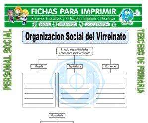 Organizacion Social del Virreinato para Tercero de Primaria