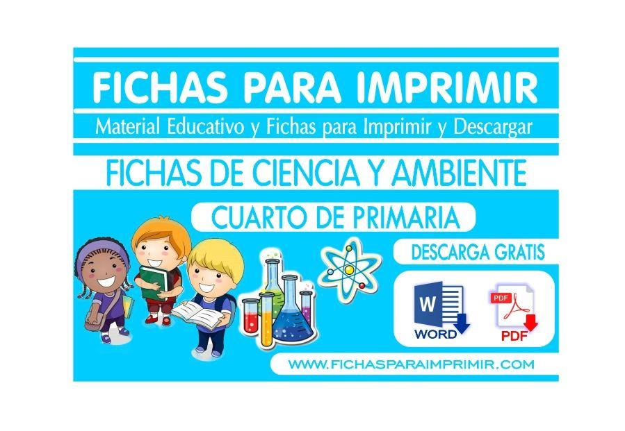 Ciencia tecnologia y ambiente para cuarto de primaria for Cuarto primaria