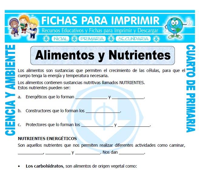 ficha de Alimentos y Nutrientes para Cuarto de Primaria