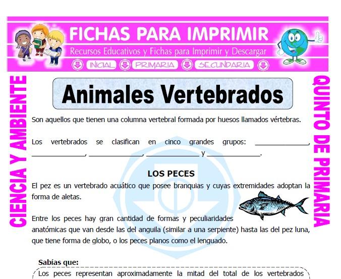 Ficha de Animales Vertebrados para Quinto de Primaria